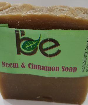 Neem and Cinnamon Soap